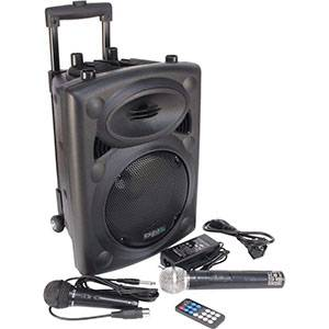Ibiza PORT8VHF-BT - Sistema de sonido portátil